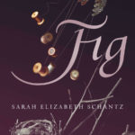 graphic: the cover of Fig by Sarah Schantz
